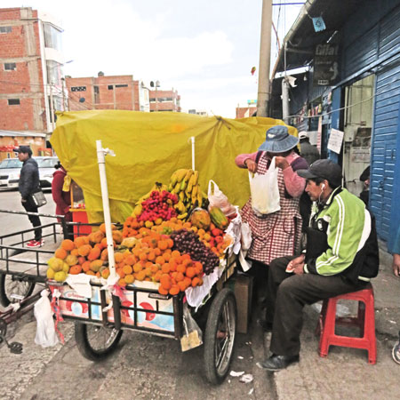 A fruit vendor in Puno, Peru.